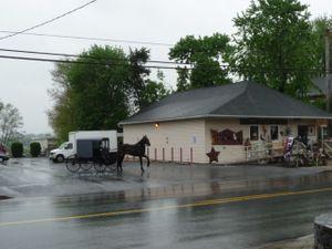 AmishCountry40509 013