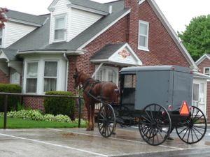 AmishCountry40509 053