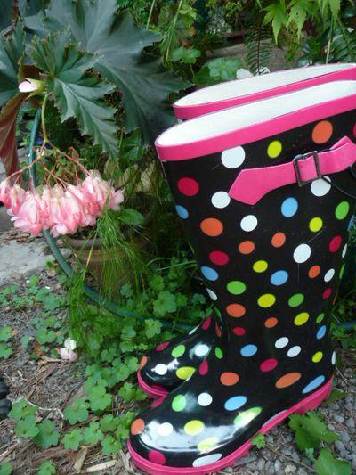 Spotty Pink trim Gumbys