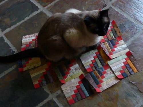 Mountain trail quilt (32)