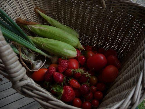 Garden goodies (1)