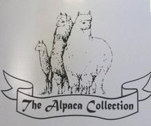 Alpaca_collection2